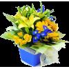 ljiljani - Biljke -