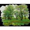 paysages - 自然 -