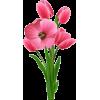pic - Rastline -