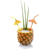 pineapple - ドリンク -