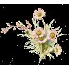 pink daisies vintage illustration - Uncategorized -