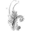 plant drawing - Plantas -