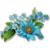plants - Uncategorized -