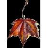 png - Plantas -
