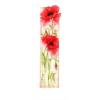 poppy - Plantas -