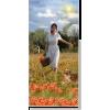 poppy fields - Uncategorized -