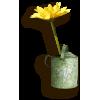 predmeti - Objectos -