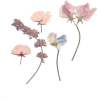 pressed pastel flower stems  - Plants -