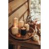 pretty fall - Natur -