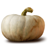 pumpkin - Items -