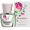 Rose - Fragrances -