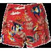 r13 - Shorts -