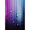 rain - Fondo -
