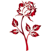 red rose - Uncategorized -