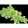 rośliny - Rośliny -