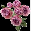 rose - Items -