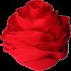 rose hat - Hat -