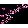 rose petals - Natural -