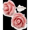 Roses Earrings - Earrings -
