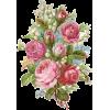 rose spray - Illustrations -