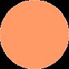 salmon orange circle - Items -