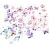 Flowers - Ilustrationen - 1.00€