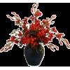 Plants Red - Plants -