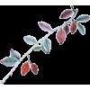 Plants Colorful - 植物 -