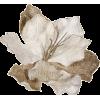 Plants Silver - 植物 -