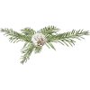 Plants Green - 植物 -