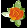 Plants Orange Flower - Plants -