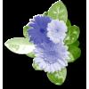 Plants Blue Flower - 植物 -