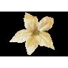 Decoration - Rośliny -