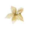 Decoration - 植物 -