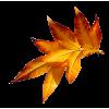 Leafs Orange Red - Biljke -