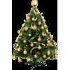 Xmas Tree - 植物 -