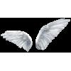 Wings - イラスト -