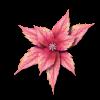 Leaf - イラスト -