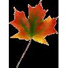 Leaf - Plants - 67.00€  ~ $78.01