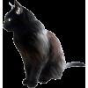 Cate - Animals - 54.00€  ~ $62.87
