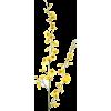 flower - Biljke -