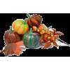 pumpkin - Zelenjava -