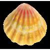 Seashell Beige - Animales -