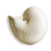 Seashell White - 小物 -