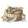 seashells - Items -
