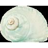 shell - 自然 -