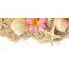 shells - Predmeti -