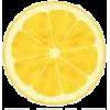 lemon - フルーツ -