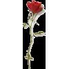 single red rose stem  - Biljke -