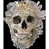 skull - Animales -